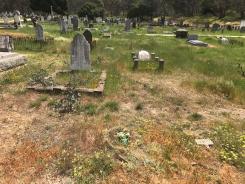 Grave of Susannah Dando nee Hapgood Castlemaine cemetery