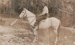 HAPGOOD Jeff postcard at Northern Rivers on white horse he rode to Qld 1914